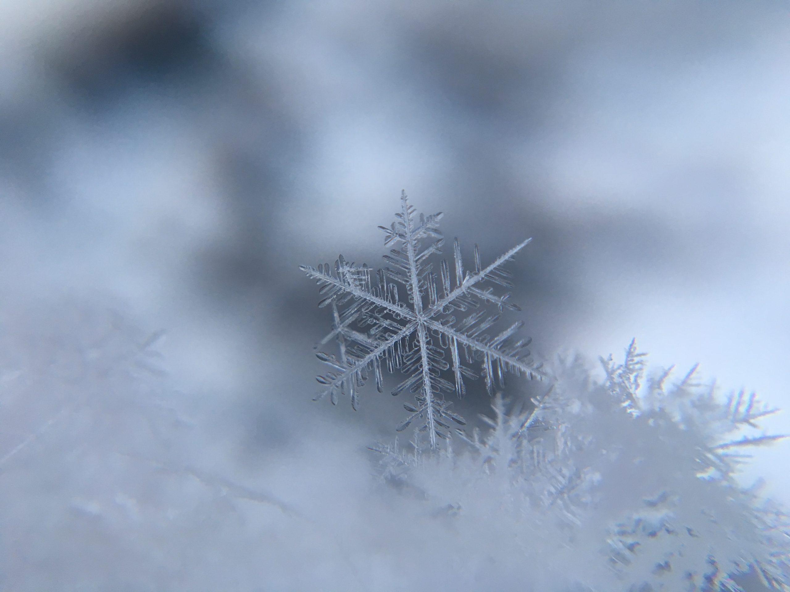 anwalt-recht-mietrecht-schnee-winter